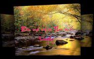 Bên Má Mùa Thu Cuối - Songthy - Quỳnh Dao Diễn Đọc